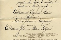 Gathering dust: Extract of a birth certificate