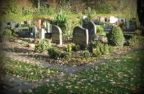 The Noorderveld cemetery in Nieuwegein