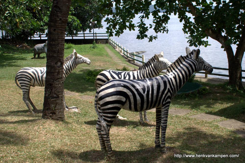 Zebra statues