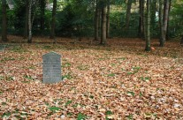 Wordless Wednesday: Autumn in the cemetery