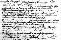 Reading and understanding Dutch birth certificates