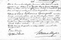 Death certificate of Sara Catharina Springvelt