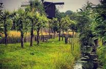 Windmill in Nieuwegein